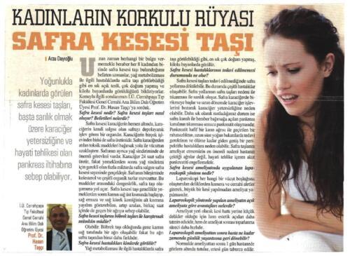 tarihi-yarimada-fatih-gazetesi-haziran-2011